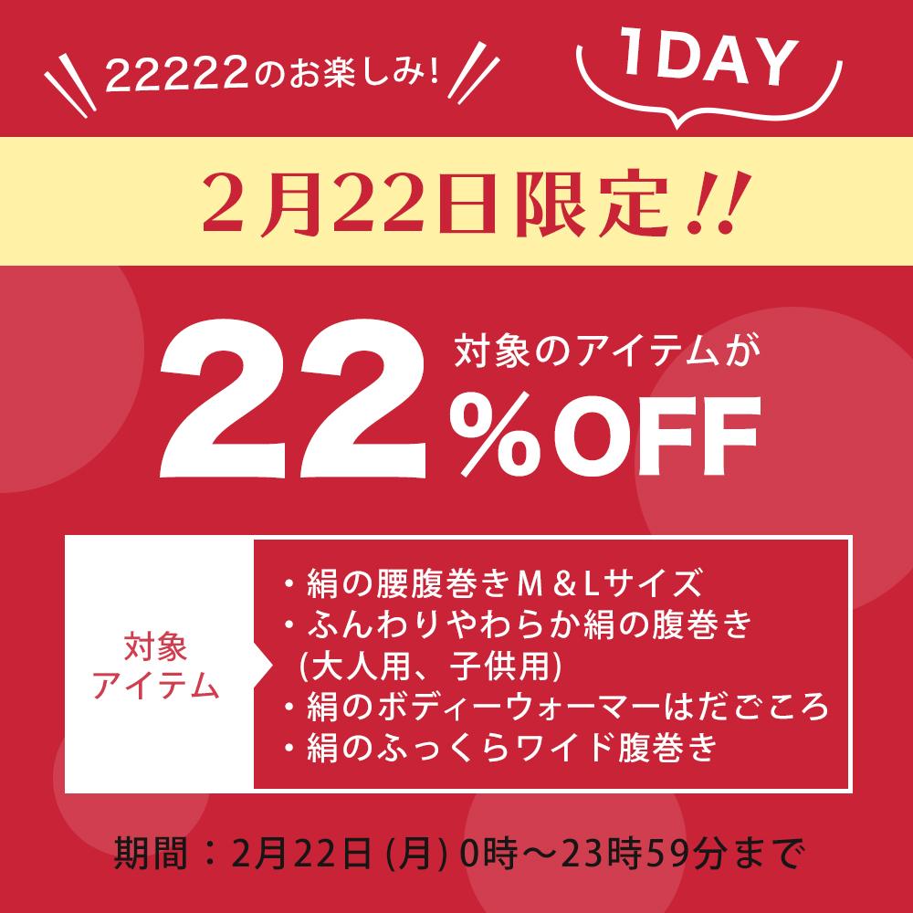 2月22日22%OFFキャンペーン
